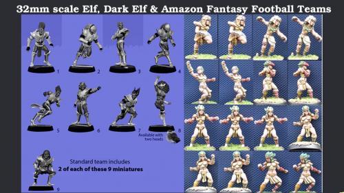 32mm scale Fantasy Football Amazons, Elves & Dark Elves