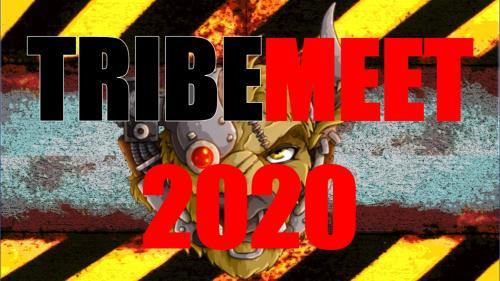 TribeMeet 2020