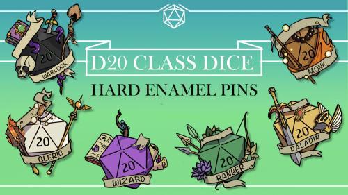 D20 Class Pins