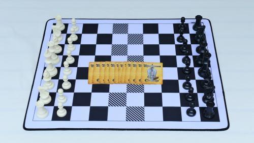 Renaissance Chess Challenge™ - The Art of Chess Reimagined