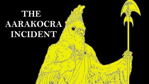 The Aarakocra Incident