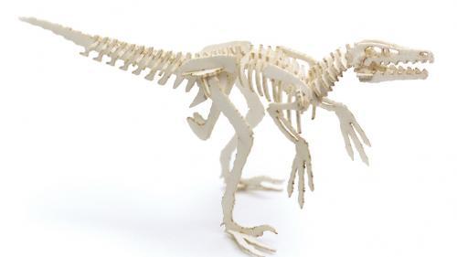 Velociraptors everywhere. RUN!